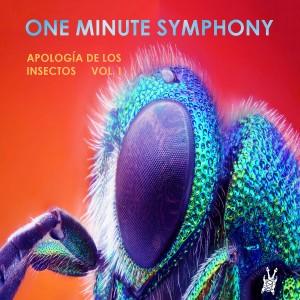 oneminutesyphony